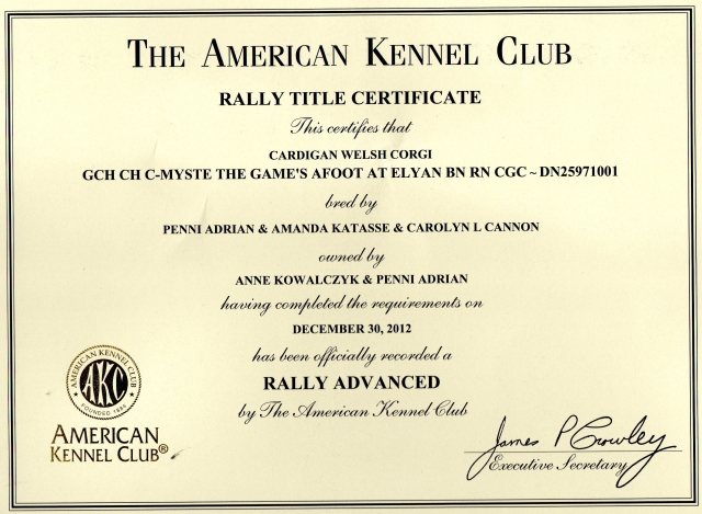RALLYADVANCED