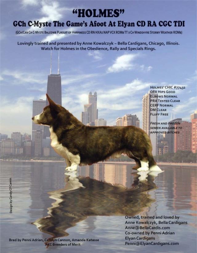 Holmes' Handbook Ad!
